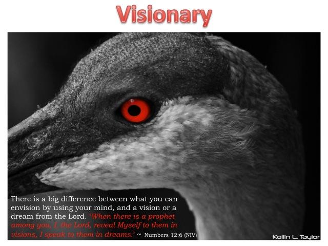 Visionary (2)