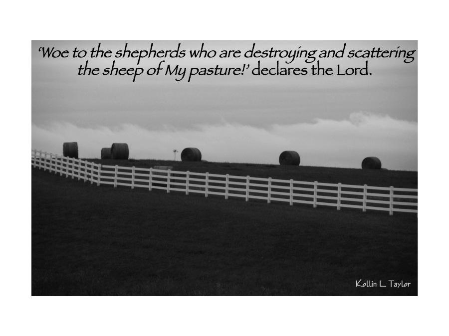 Heavy Shepherding