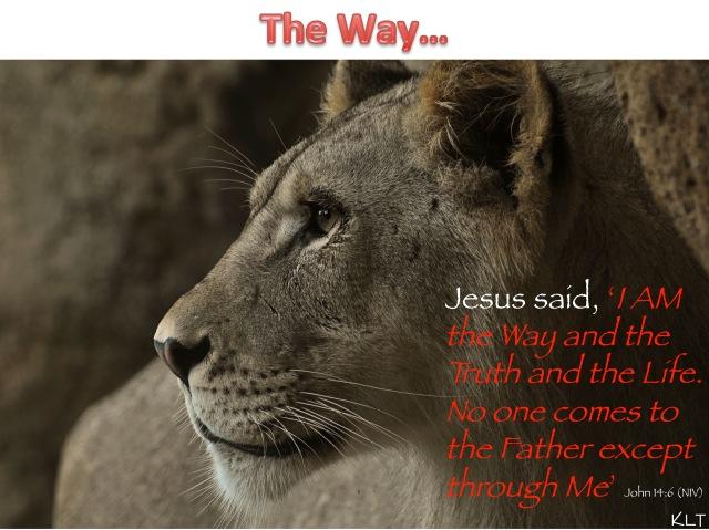 The Way(2)