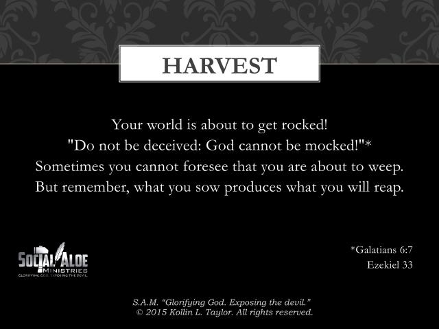 Harvest_1